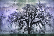 Purple Tree Framed Prints - Tree Silhouette in Purple Framed Print by Carol Leigh