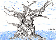 Tree Lines Drawings Prints - Tree Spirit Print by Regina Valluzzi
