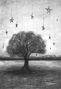 Pencil Sketch Drawings Prints - Tree Stars Print by J Ferwerda