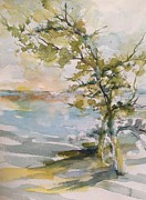 Tree Study Print by Robin Miller-Bookhout