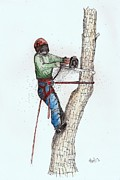 Chipper Posters - Tree Surgeon working on oak tree Poster by Gordon Lavender