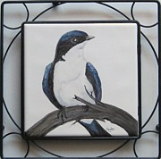 Sandra Maddox - Tree Swallow on Branch