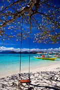 Palawan Prints - Tree swing and shadow  Print by Fototrav Print