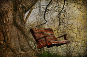 Deborah Benoit Framed Prints - Tree Swing By The Lake Framed Print by Deborah Benoit