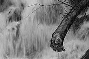 Spring Floods Photo Posters - Tree trunk in a cascade - monochrome Poster by Intensivelight
