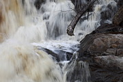 Spring Floods Photo Posters - Tree trunk in a waterfall Poster by Intensivelight