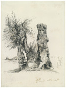 Monet Drawings Framed Prints - Tree Trunks at La Mare eu Clere Framed Print by Claude Monet