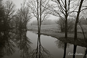 Dave Gordon Prints - Trees and Reflections Print by Dave Gordon