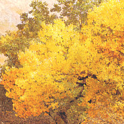 Photo Collage Photo Prints - Trees Autumn Yellow Cottonwood Print by Ann Powell