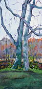 Janet Felts - Trees by the Stream