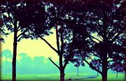 Trees In My Dreams Print by Faith Williams