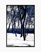 Photographic Art For Sale Photos - Trees in Snow II by Tom Prendergast