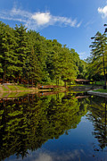 Community Photos - Trees Reflected on Mirrored Lake  by Amy Cicconi