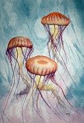 Jeff Lucas Prints - Tres Jellyfish Print by Jeff Lucas
