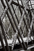 Winter Storm Prints - Trestle Gridwork Decorated by Nemo Print by Deborah Smolinske