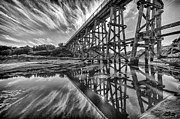 Shari Mattox - Trestle in Mono