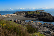 Juan De Fuca Photos - Trial Island and the Strait of Juan de Fuca II by Louise Heusinkveld