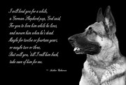 German Shepard Dog Prints - Tribute to German Shepard Print by Cecil Fuselier
