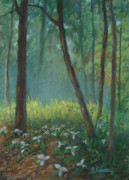 Backlit Pastels Originals - Trillium Trail by Linda Preece
