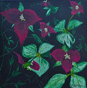 Perennials Painting Posters - Trilliums Poster by Sally Rice
