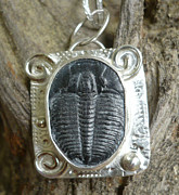 Featured Jewelry - Trilobite pendant by Arianna Bara