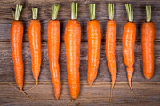 Food And Beverage Photos - Trimmed carrots in a row by Jane Rix