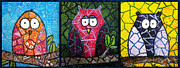 Trendy Metal Prints - Trio of Patchwork Owls Metal Print by Stacey Clarke