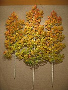 Autumn Sculptures - Triple Fall Aspens by Kelly Smith Cassidy