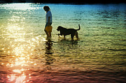 Dog Play Beach Framed Prints - Tripping The Light Fantastic Framed Print by Laura  Fasulo
