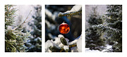 Santa Art Prints - Triptych - Christmas Forest - Featured 3 Print by Alexander Senin