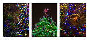 Santa Art Framed Prints - Triptych - Christmas Trees - Featured 3 Framed Print by Alexander Senin