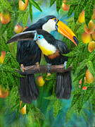 Tropic Spirits - Toucans Print by Carol Cavalaris