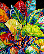 Marcia Baldwin - Tropical Abstract