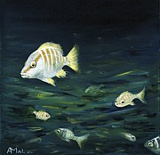 Caribbean Paintings - Tropical Fish by Anastasiya Malakhova