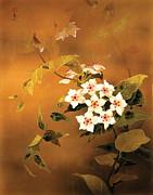 Tropical Flower Print by Haruyo Morita