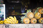 Tropical Fruits Print by Tuimages