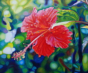 Morgan Ralston - Tropical Hibiscus