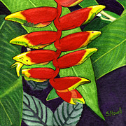 Sandi Howell - Tropical in Red and...