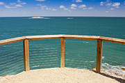 Tim Hester Prints - Tropical Lookout Print by Tim Hester