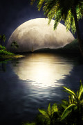 Escape Originals - Tropical Moon by John Robichaud
