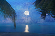 Sea Moon Full Moon Digital Art Posters - Tropical Moonglow Poster by Betty LaRue