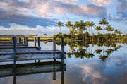 Tropical Morning Print by Debra and Dave Vanderlaan