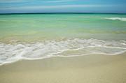 Charmian Vistaunet - Tropical Ocean Beach