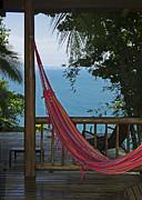 Nina Stavlund - Tropical Paradise...