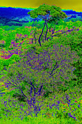 Tropical Rainforest Digital Art Prints - Tropical rainforest in Kenya Africa Print by Ronald Jansen