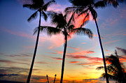 Tropical Sunset Prints - Tropical Sunset Print by Kelly Wade