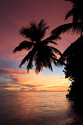 Tropical Sunset Framed Prints - Tropical sunset Framed Print by Matteo Colombo