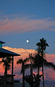 Kathy DesJardins - Tropical Sunset- Moon...