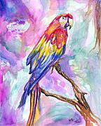 Macaw Painting Framed Prints - Tropical Treasure Framed Print by Eve  Wheeler