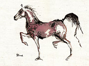 Drawing Painting Originals - Trot by Angel  Tarantella
